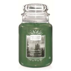 Ароматна свещ Evergreen Mist голям